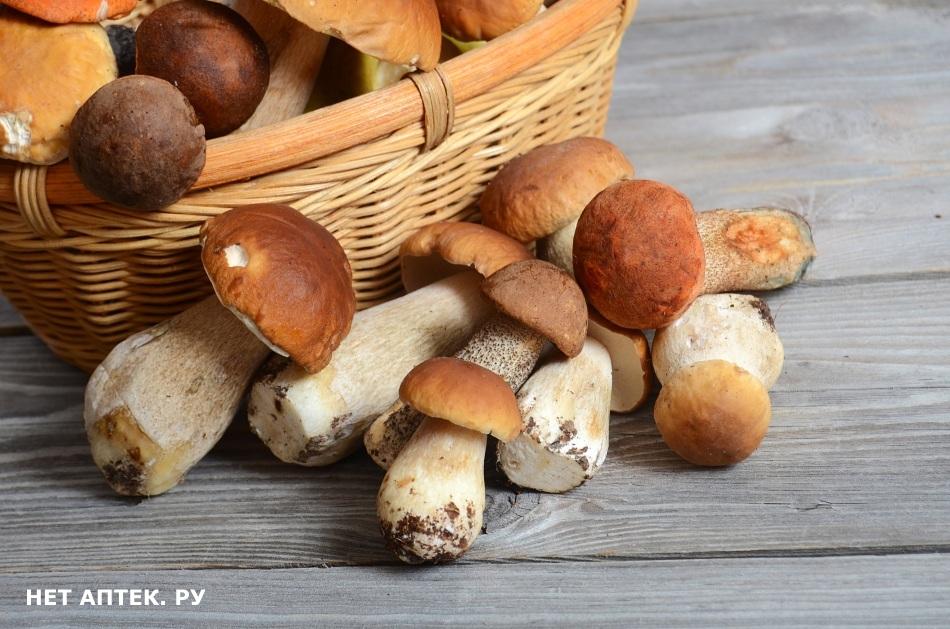 Диета и бел грибы